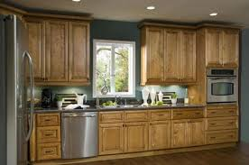Gorgeous Sears Kitchen Cabinet Refacing Gallery Home Designs - Sears kitchen cabinets