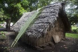 traditional hut in port resolution with two big palm tree leaves