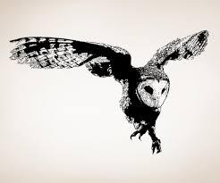 vinyl wall decal sticker australian owl flying os aa496
