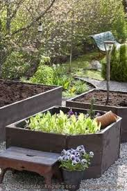 raised vegetable garden bed tips and benefits raised bed