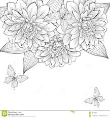 butterfly hand drawn cards background with frame of dahlia
