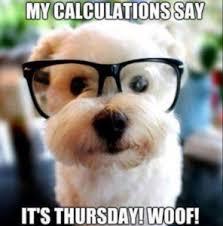 Funny Thursday Meme - 20 best happy thursday meme happy thursday funny