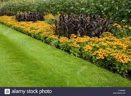 ornamental grass border rhs wisley stock photos ornamental grass