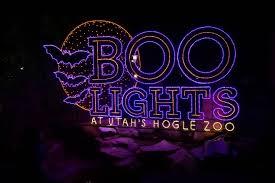 Zoo Lights Salt Lake City by Studio 5 Hogle Zoo U0027s