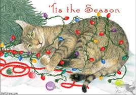 bottman cards bottman christmas cats dogs illustrations