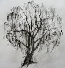the 25 best willow tree tattoos ideas on weeping