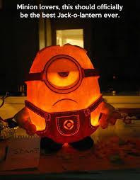 Meme Pumpkin - for minion lovers pumpkin carving art know your meme