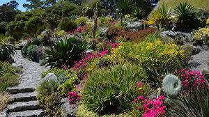 New Zealand Botanical Gardens Oct 2017 New Zealand Garden Nature Spectacular