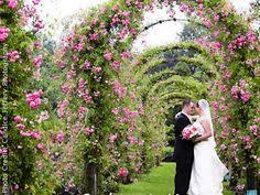 cheap wedding venues in ct inexpensive connecticut wedding venues waveny house looks