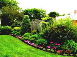 Landscaping Ideas For Big Backyards Big Front Yard Design Cheap Landscaping Ideas For Large Backyards
