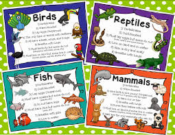 simply sweet teaching animal classification and habitats unit