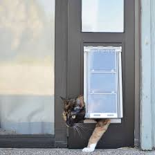 Cat Flap Patio Door Cat Doors For Sliding Glass Doors Pet Doors Flaps