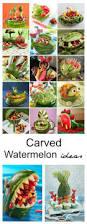 Canned Food Sculpture Ideas by Best 20 Watermelon Animals Ideas On Pinterest Fruit Animals