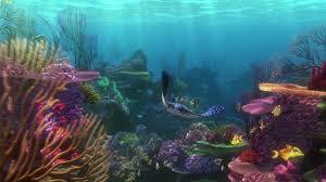 film kartun nemo finding nemo animation underwater sea ocean tropical fish adventure
