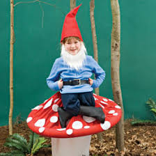awesome gnome sitting on toadstool costume pinny penny