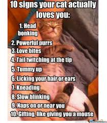 Meme Center Sign Up - 10 signs your cat loves you by simon cerezo 752 meme center
