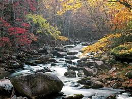 Tennessee national parks images This one is a quot go back to quot b c we already went and did a cabin at jpg