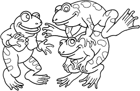 frog coloring pages rainforest arrow poison frog images coloring