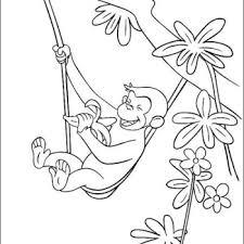 emperor tamarin coloring eating banana hobby coloring