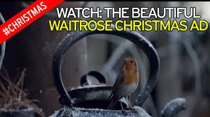 watch waitrose 2016 christmas advert as robin makes epic journey