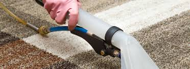 Toronto Upholstery Cleaning Rug And Upholstery Cleaning Toronto Steam N Clean