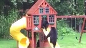 Backyard Play House Where U0027s Goldilocks Three Bears Frolic In Backyard Playhouse Youtube