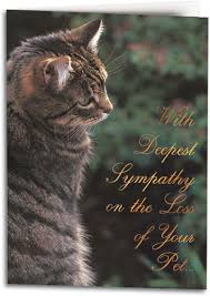 condolences for loss of pet sympathy card for the loss of a beloved pet cat zee zoeys
