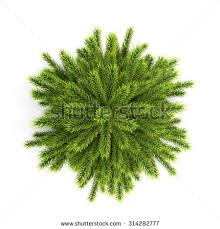 top view tree without ornaments stock illustration
