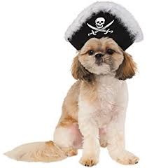 Halloween Costumes Dogs Cutest Puppy Costumes 2011 Amazon Pirate Pup Halloween Costume Small Dog Costume Pet
