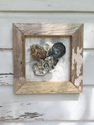 framed oyster shell wall art beach house seashell art coastal