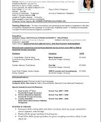 resume exles it professional resume exler it professional career objective exles