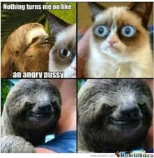 Rape Sloth Memes - grumpy cat vs rape sloth by 8 bitkittycat meme center