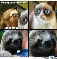 Dirty Sloth Memes - grumpy cat vs rape sloth by 8 bitkittycat meme center