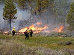 Wildfire Equipment Operators by Want To Reduce Wildfire Risk In Truckee Tahoe Region Experts Say