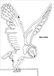barn owl coloring page animals town animal color sheets barn