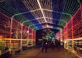 winter park christmas lights tunnel of lights at lincoln park zoo s zoolights during the winter