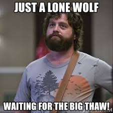 Lone Wolf Meme - just a lone wolf waiting for the big thaw alan hangover meme