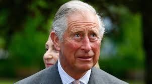 Prince Charles Meme - prince charles vs bald eagle snap becomes priceless meme rt uk news