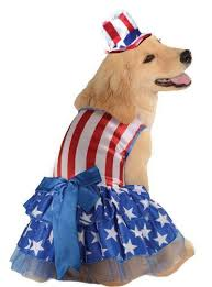 9 best patriotic costumes images on pinterest