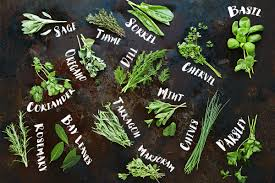 how to use herbs jamie oliver features