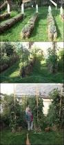 best 25 straw bale gardening ideas on pinterest strawbale