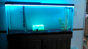 color changing led fish tank lights led color changing lights in aquarium youtube