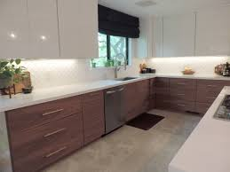 Ikea Kitchen Cabinet Design Mid Century Modern Ikea Kitchen Cabinets New Home Design Ikea