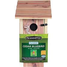 pennington cedar bluebird bird house 1 unit walmart