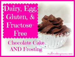 delicious dairy egg gluten u0026 fructose free chocolate cake and