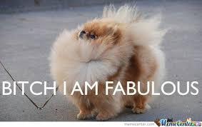 I Am Fabulous Meme - bitch i am fabulous by toboe meme center