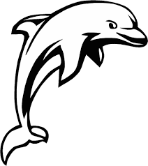 dolphin line art free download clip art free clip art on