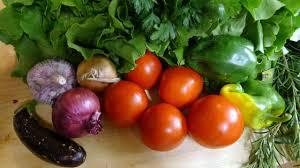 histoire de la cuisine italienne la cuisine italienne et la tomate une histoire d amour villa le