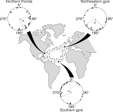 Magnetic Declination Map Magnetic Maps In Animals Nature U0027s Gps Journal Of Experimental