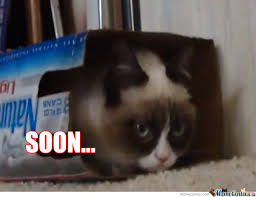 Meme Soon - grumpy cat soon by lordmemes meme center